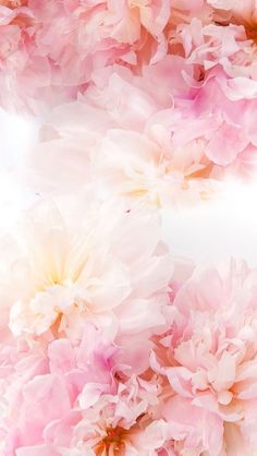 52 new ideas for flowers peonies background bouquets Frühling Wallpaper, Flower Phone Wallpaper, Spring Wallpaper, Wallpaper Backgrounds, Iphone Backgrounds, Flowers Background Iphone, Spring Backgrounds, Pink Floral Background, Vintage Flower Backgrounds