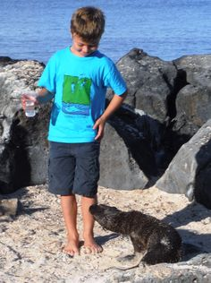 My son being sniffed by a sea lion on a land based tour.