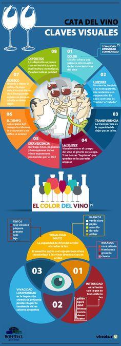Claves para identificar las características visuales de los mejores vinos