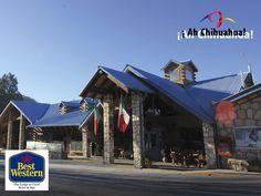 Nuestro Hotel Best Western Lodge at Creel, se distingue por su excelente servicio y concepto de habitaciones tipo cabaña y 1 penthouse. Contamos con una inmejorable ubicación en Creel, la entrada a la Sierra Tarahumara, además de ser un hotel amigable con el medio ambiente. Descubra lo mejor de Chihuahua y hospédese en nuestro hotel. Para mayor información y reservaciones le invitamos a comunicarse al teléfono (888)8794071 o a consultar nuestra página web. www.thelodgeatcreel.com.mx…
