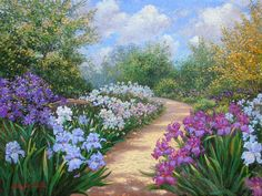 """""""Iris Path"""" is an original oil painting based on the Iris Garden at the Will Rogers Park Gardens and Arboratum in Oklahoma City OK. A sunlit path guides the viewer around a wonderous mass of bright and vibrant Iris flowers. . Original Painting"""