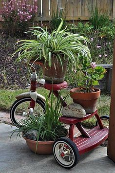 Repurposed tricycle as Garden Plant Stand-put this by chimney or front porch to fill in