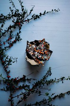 Chocolate Pretzel Candy Cane Bark via BAKED the blog.
