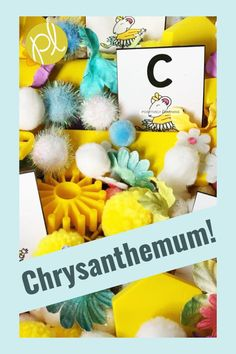 Chrysanthemum Activities - Sensory play with task cards based on the favorite read aloud Chrysanthemum! Tasks include mentor sentence, vocabulary, sight words, and even math! From Positively Learning Blog #sensorybins #mentorsentence #chrysanthemum