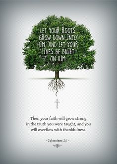 Our faith cannot strengthen until we root ourselves DEEP into the work of Christ. Base everything on Jesus, your rock of foundation. Keep the faith in Jesus Christ and thank Him for all he has done! Scripture Verses, Bible Verses Quotes, Bible Scriptures, Faith Quotes, Tree Bible Verse, Wisdom Quotes, Qoutes, Scripture Tattoos, Jesus Bible