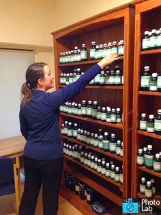 Naturopathy, Student Studying, Herbal Medicine, Wine Rack, Herbalism, Students, College, Health, University