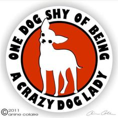 One dog short of being a crazy dog lady