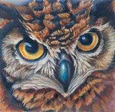 Wildlife Paintings, Wildlife Art, Owl Paintings, Original Paintings, Owl Canvas, Canvas Art, Painted Rocks Owls, Owl Quilts, Oil Pastel Art