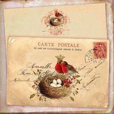 Bird with nest, carte postale, vintage printable postcard Vintage Ephemera, Vintage Cards, Vintage Paper, Vintage Postcards, Decoupage, Christmas Note, Christmas Letters, Old Letters, Images Vintage
