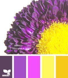 Colour palette <3