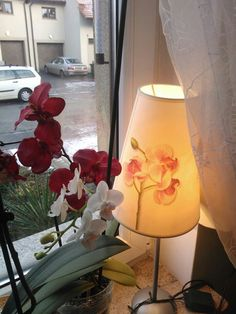 Lamp shades orchid flower