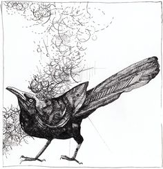 Squat // Print // Grackle by Ironbees on Etsy