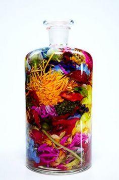 Bottle Flower 2 by Makoto Azuma