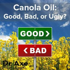 Is canola oil good, bad or dangerous? Find out the research benefits and side effects of canola oil along with it's exact nutrition facts. One shocking