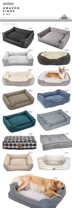 There are numerous types of pet dog toys readily available for you to select from. So, when looking for an ideal toy for your pooch remember to consider your pet dog's age and activities first. Cute Dog Beds, Pet Beds, Weimaraner, Farmhouse Dog Beds, Dog Rooms, Fluffy Dogs, Animal Decor, Dog Houses, Dog Accessories