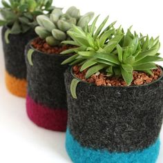 Felted Wool pots.