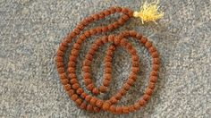 A rudraksha is the seed of the Eliocarpus ganitrus tree and plays an important role in a spiritual seeker's life. Sadhguru looks at the various types of these beads and their benefits, including the panchmukhi …