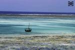 Hakuna Matata auf Zanzibar - https://mybeastgoeseast.wordpress.com/2016/10/12/hakuna-matata-auf-zanzibar/ - A kind of Magic – geheimnisvoll und wunderschön. Unsere Erwartungen sind hoch, deshalb hat es diese Insel im Indischen Ozean auf unsere Bucket List geschafft und nachdem wir Sambia und Tansania im Eiltempo durchfahren haben, benötigen wir auch wieder einmal ein paar Tage der Ruhe und Erholung. Von Daressalam, der Hauptstadt Tansanias geht es mit [&hellip