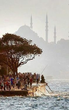 İstanbul.                                                                                                                                                                                 More