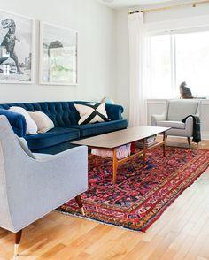 Persian rug, tufted blue velvet sofa, mid-century chairs in Sunbrella fabric, neutral walls