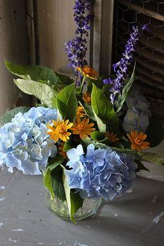 Blue and yellow combo of Hydrangea, Salvia, and melampodium