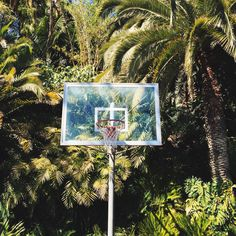 The Classy Issue: Photo Street Basketball, Basketball Art, Basketball Pictures, Basketball Drawings, The Escapists, Portable Basketball Hoop, Hoop Dreams, Indigo Children, Sports Wallpapers