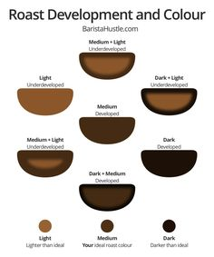 Home roasting tips: Roast Development and Colour - a visual guide from Baristahustle.com