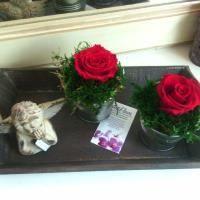 Fleurs stabilisées Grand Plateau bois 2 roses éternelles stabilisées