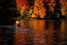Canoeing on the Mississippi River enjoying the fall colors #OnlyinMN