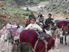 Bakhtiyari Nomads in Monar, Bazoft, Khuzestan© P. Khosronejad, 2003.