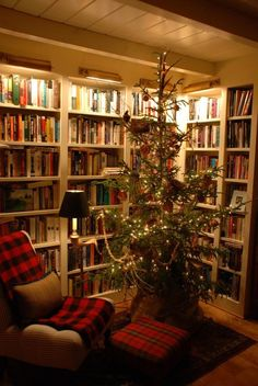Christmas tree, plaid, library - my kind of room!