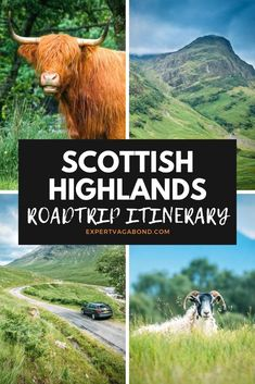 Driving The Scottish Highlands: Mountains, Lochs, and Glens! Take a look at my Scotland Highlands road trip itinerary to get some inspiration for your next adventure. ExpertVagabond.com #Scotland #UnitedKingdom #Roadtrip #Adventure #Travel