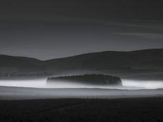 Late Night Mist
