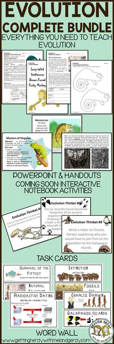 Evolution lesson planactivity for middle school evolution middle evolution curriculum complete bundle includes powerpoint differentiated handouts science interactive notebook task cards fandeluxe Images