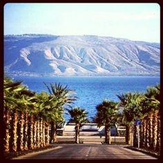 went swimming in the sea of Galilee