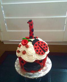Ladybug themed Happy Birthday Smash Cake