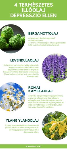 Doterra, Spices, Therapy, Herbs, Fruit, Healthy, Food, Aromatherapy, Tips