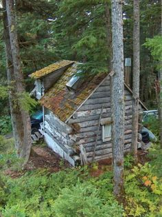 Cabin in the woods.