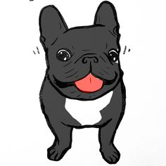 'Ninja', French Bulldog illustration, @frenchie_ninja