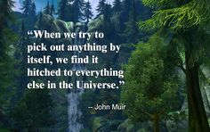 john muir quotes - Google Search