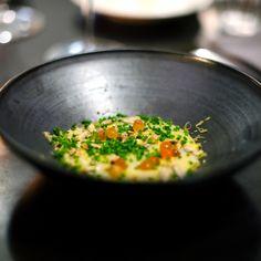 Attentie van de chef -Vichyssoise met gember, zonnebloempitten, mimolette kaas en zalmeitjes