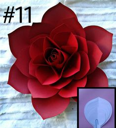 Paper Flower Patterns, Paper Flowers Craft, How To Make Paper Flowers, Large Paper Flowers, Paper Flower Wall, Crepe Paper Flowers, Paper Flower Tutorial, Paper Flower Backdrop, Giant Paper Flowers