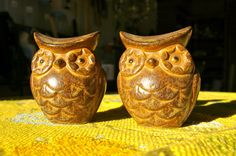 These are the exact owl salt and pepper shakers I have in my kitchen!
