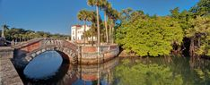 6 Great Gardens to Visit in Florida - The New York Times
