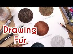 How to draw realistic cat fur with colored pencils | Emmy Kalia - YouTube