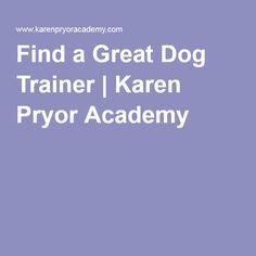 Find a Great Dog Trainer | Karen Pryor Academy