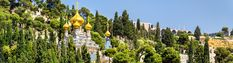 #sponsoredpost Take this 10 day Christian tour package to cover top sites in Israel with a focus on Biblical locations. See places you've only dreamed of like Jerusalem; Bethlehem where Jesus was born; Jericho and Nazareth where Jesus grew up. Visit Masada and the Dead Sea. See Cana; the River Jordan where Jesus was baptized; Sea of Galilee and Golan. On the Mediterranean coast, tour Caesarea, Haifa, Akko and Rosh HaNikra. #affiliatelink #affiliate #travel #traveldestination #holidays Top Site, Sea Of Galilee, Haifa, Dead Sea, Bethlehem, Day Tours, Jerusalem, 10 Days, Israel
