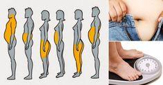 Distintos tipos de sobrepeso ¿Puedes reconocerlos? Según la distribución del tejido adiposo, hay diferentes tipos identificables de contextura corporal. Detrás de cada uno de estos tipos, existe una razón más allá de la genética de por qué la grasa se distribuye como lo hace. Si estás buscando reducir la grasa del cuerpo, además de un cambio de rutina en cuanto a dieta y ejercicio, debes comprender sus causas y así entender tu cuerpo, para generar un cambio de raíz y más duradero…