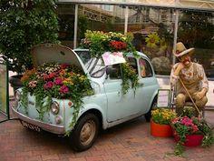 Fiat 500 garden    I wonder if I can do that with my Prizm...