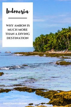 INDONESIA: Why Ambon is Much More than a Diving Destination. Put Ambon, Maluku on your list before the Bali crowd discovers the untouched beauty of the Spice Islands. See why Ambon is more than a diving destination.